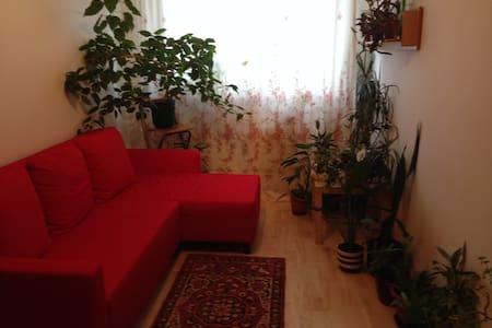 Комнаты посуточно - Prague