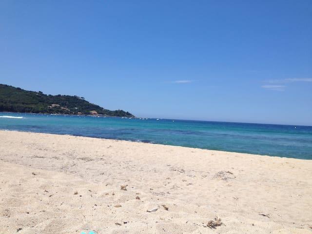Corse du Sud - résidence piscine - 100 m mer