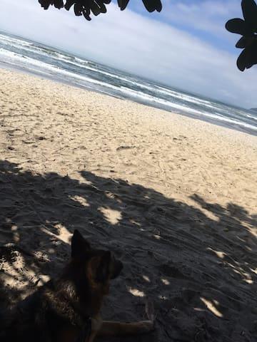 Yantra Surf Itamambuca - Quarto privado