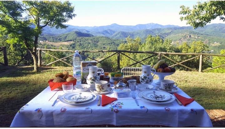 Bed and breakfast immerso nella natura a Millesimo