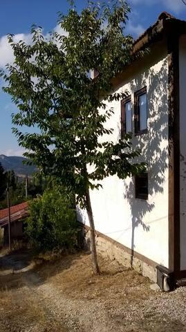 enstrüman yapımcı ve müzisyen çiftin köy evi