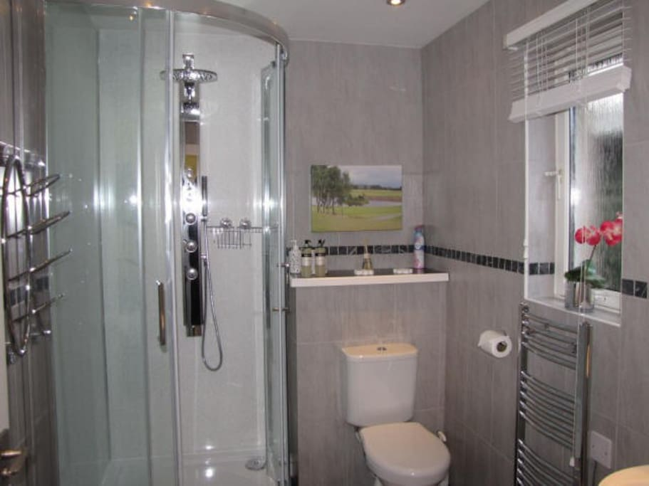 Shower Room with Power Shower and body jets