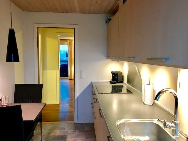 Stor moderne lejlighed! - Roskilde - Apartamento
