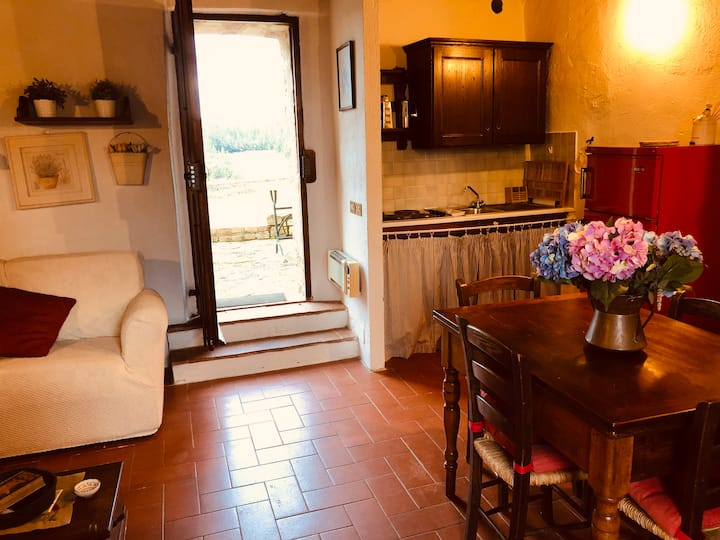 COZY APARTMENT WITH POOL&TENNIS IN CHIANTI