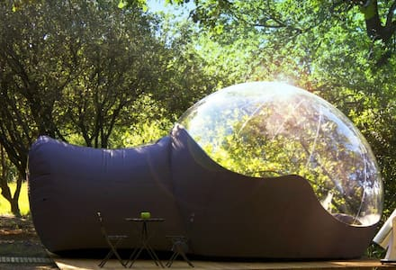 Bubble Igloo surrounded by trees - Denia - Ιγκλού