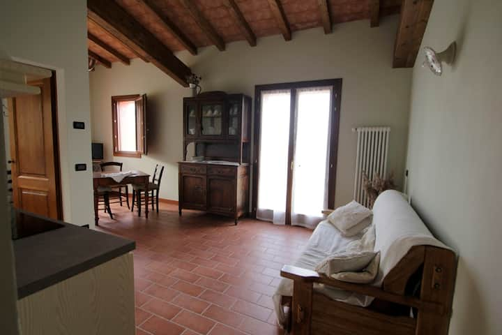 Corte Stellata two-room apartment in countryhouse