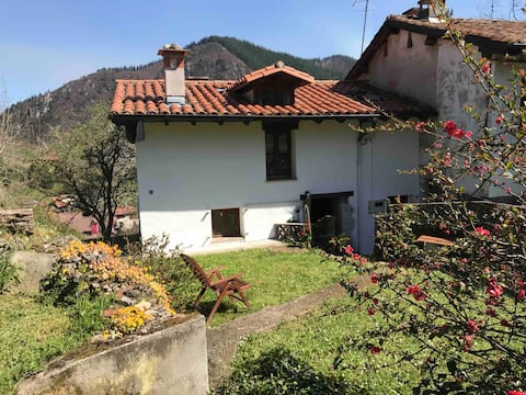 Quiet Asturian cottage near coast and Picos,