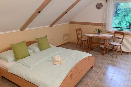 Guesthouse Draga Gostišče Draga Sobe Room 3