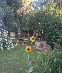 Spacious, Inviting Home in Historic Mesilla - Casa