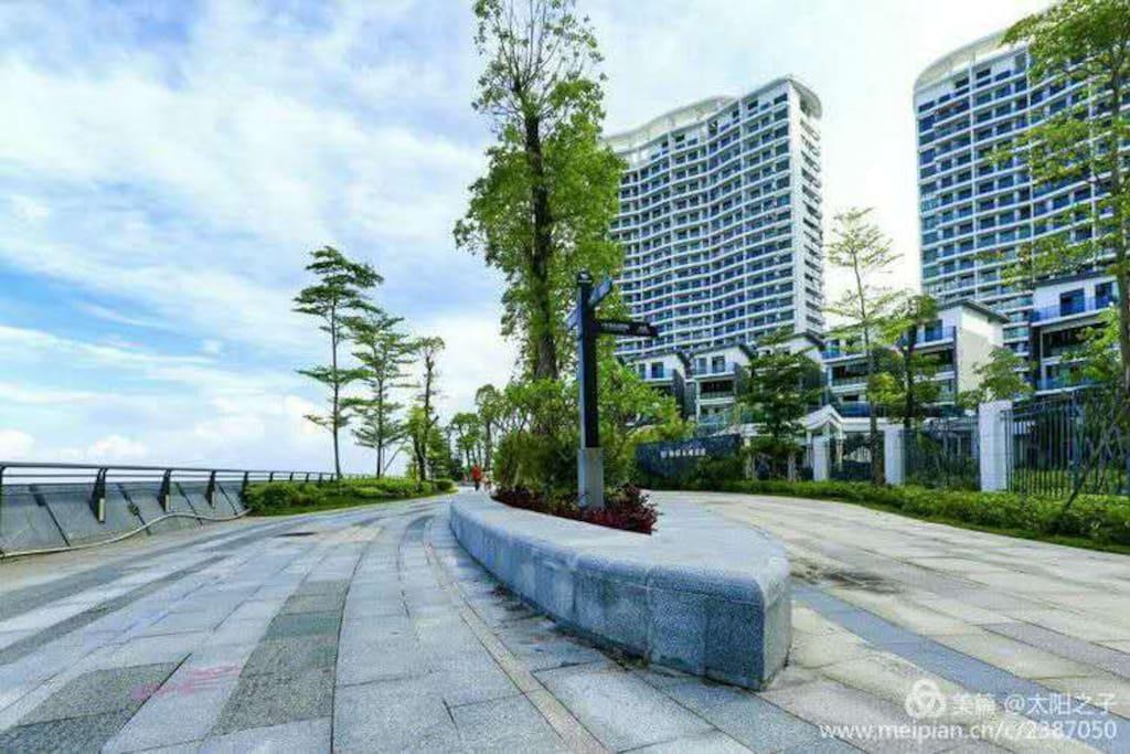 海滨绿道:晨练和观潮