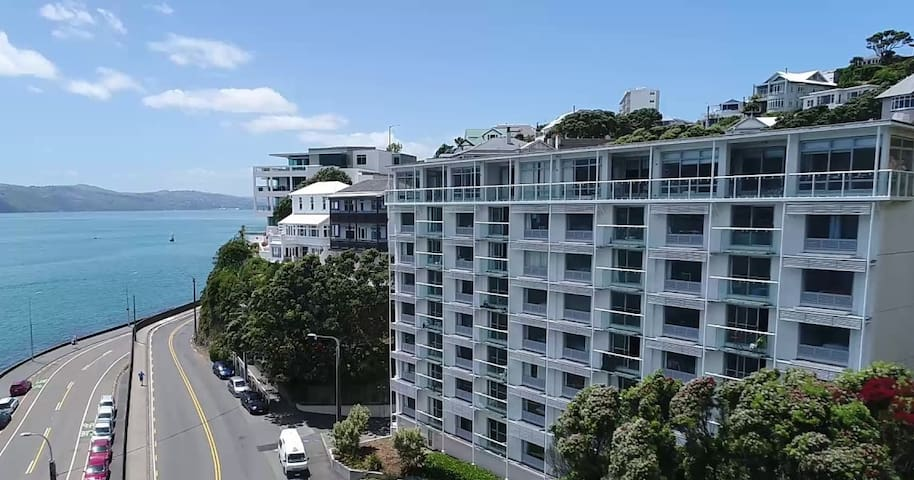 Absolute Waterfront Oriental Bay