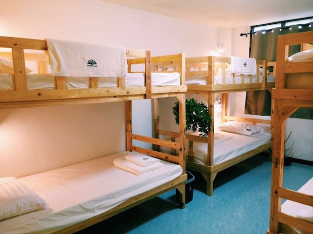 6人间床位一个(中文服务)曼谷树青旅Treehostel