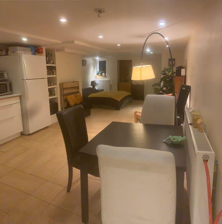 Cozy apartment located near Trinity Bellwoods.
