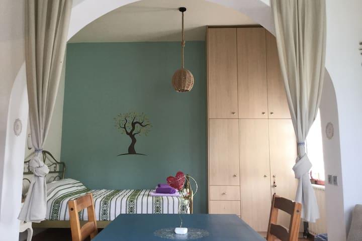 Little Olive Tree  Studio