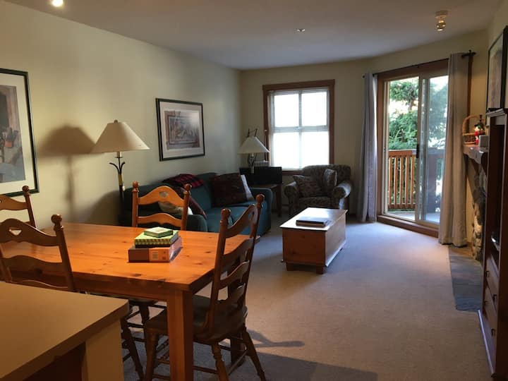 Cozy Condo in the Heart of the Village- Ski in/out