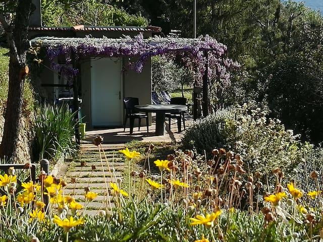 Verdi Cottage