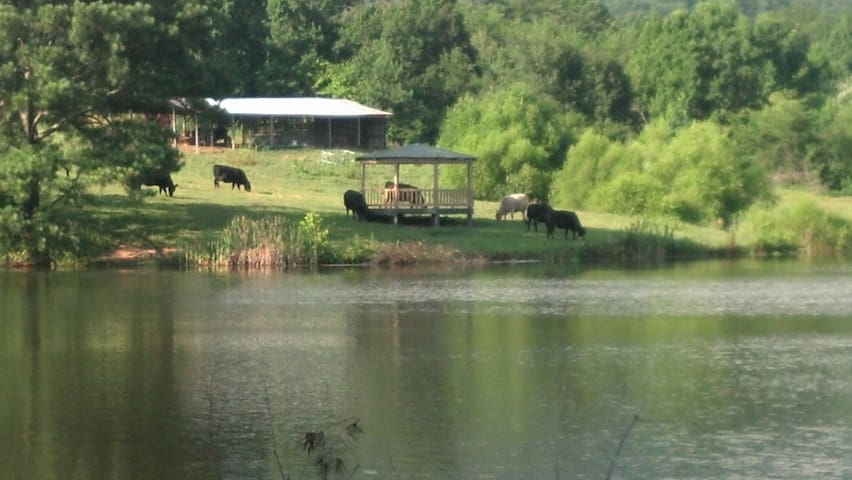 C&H Farm_ RV and Primitive Camping