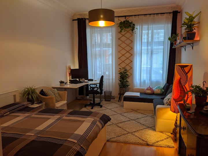 Cosy room in Kreuzberg - quiet but central!