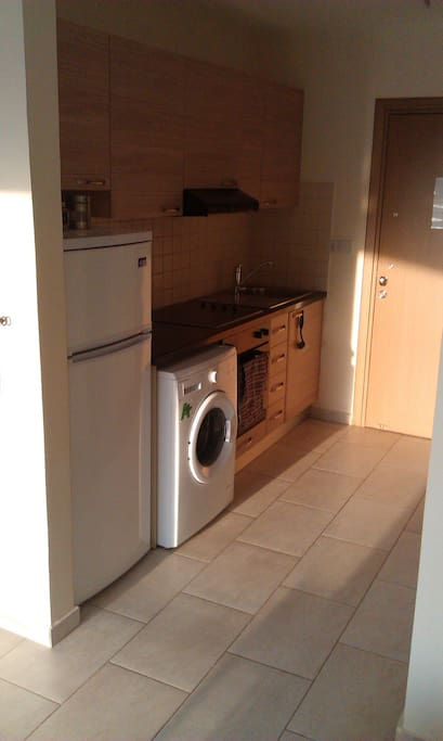 FRIDGE, WASHING MACHINE, ELECTRIC KITCHEN, OVEN.