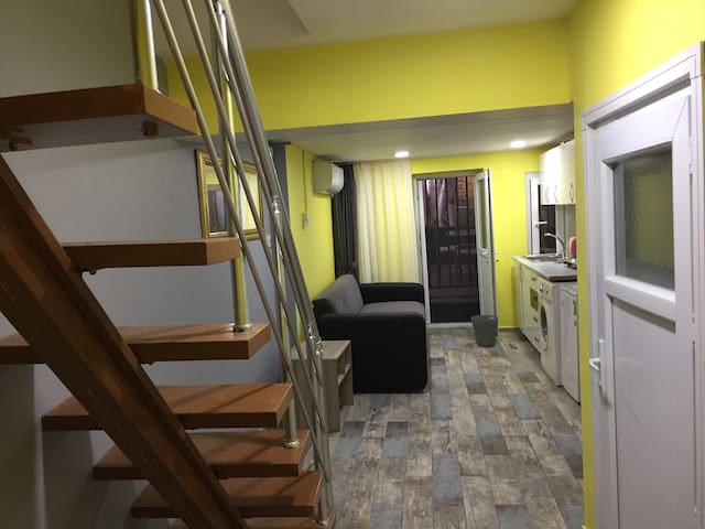 Stairs to enter the apartment ,living room and garden door from inside