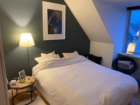 Cozy Shared Apartment in Copenhagen Ø