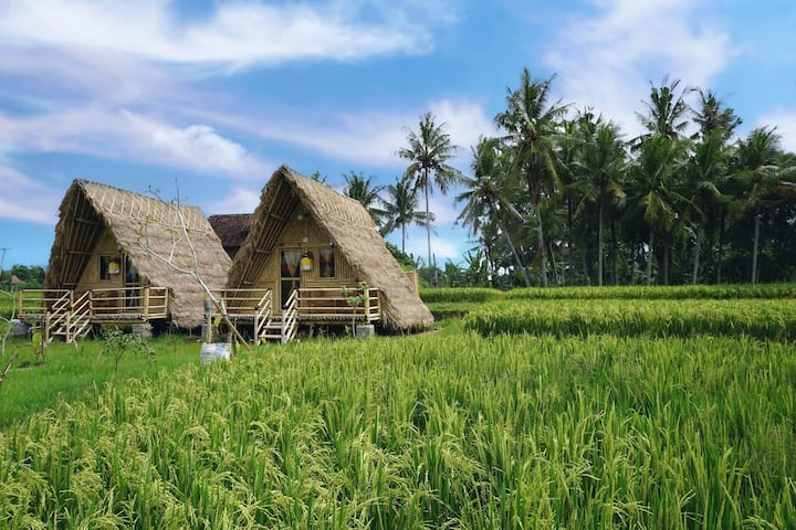 Seed of Bamboo 1BR close to yoga Barn eco house