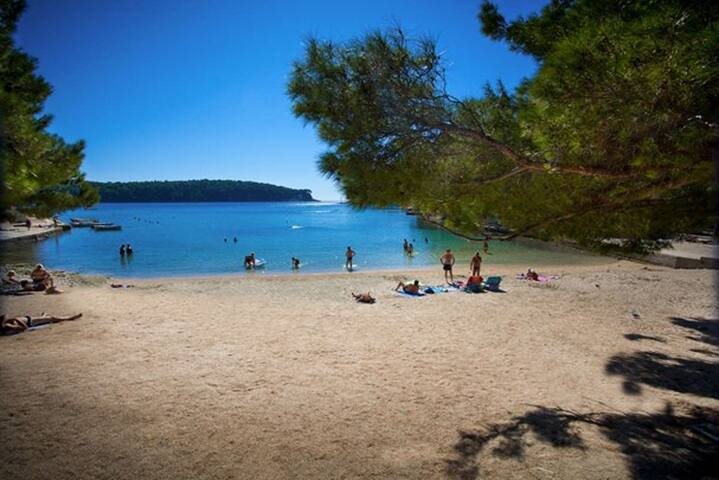 Sand beach Cikat