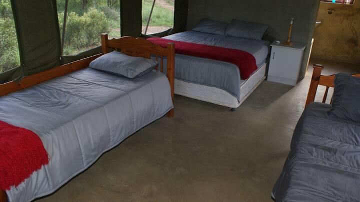 Impala Tent