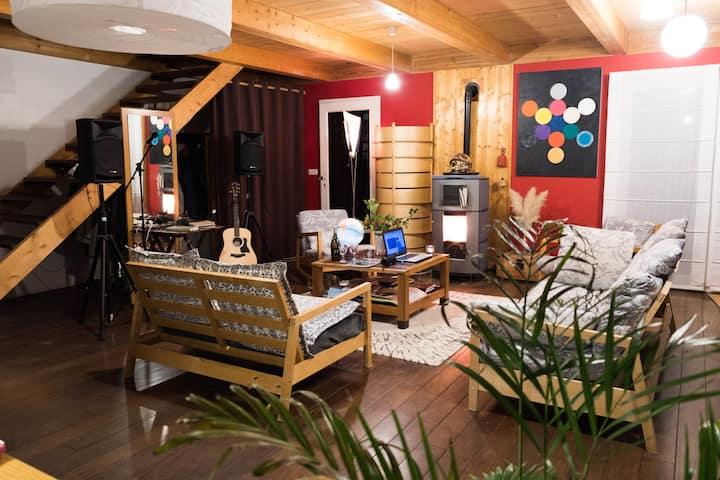 ARBOIS - Gite au saule - duplex + terrasse