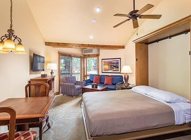 Galena 2 bedroom condo1