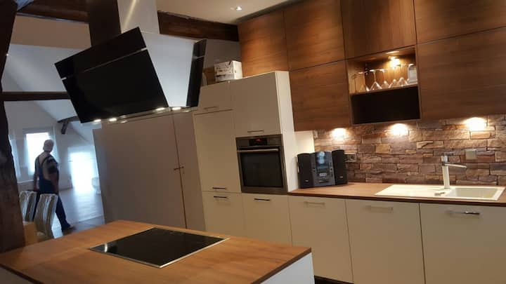 Apartment near Messe Hannover Hotel 180 sqm (m²)