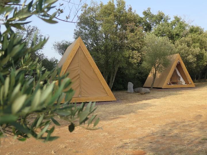 Cabanes enmig d'un museu a l'aire lliure