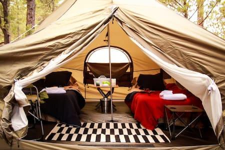 Glamping Tents in beautiful Arizona - Khemah