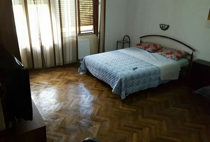 1 Timisoara Center (Italian)/Transport Free - Timișoara - Apartament
