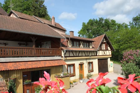 "Alsatian charming house ""Gîte de France 3*"" - Nothalten - Дом"
