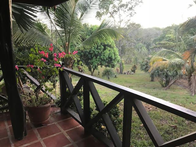 Casa Iguanas, Farm House, Enjoy Nature