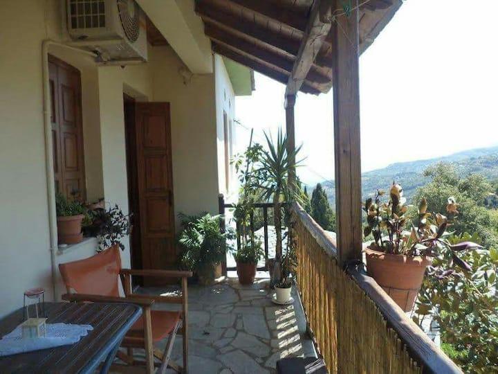 Xrysanthi's dream house