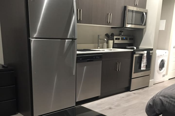 Brand new suite, short walk to downtown Kelowna!