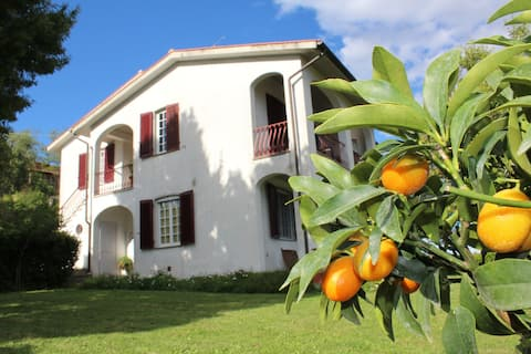 Citrus House with View of Castle, countryside