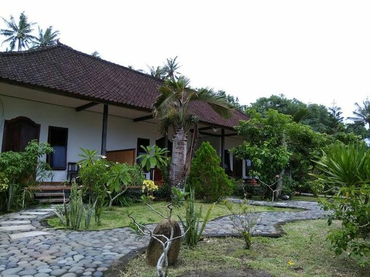 Balian Surf Camp
