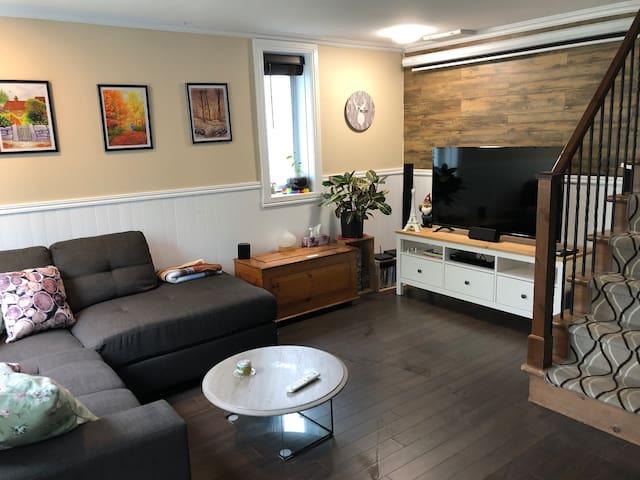 Salon / living room