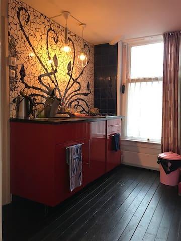 Beautiful house Rotterdam north