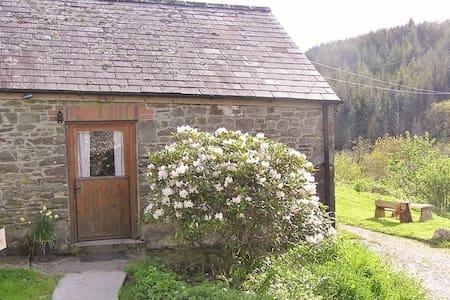 The Wren's Nest - simple woodland retreat