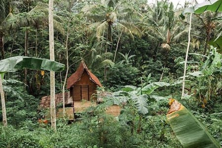 Treehouse River-side (Sitinggil Muncul)