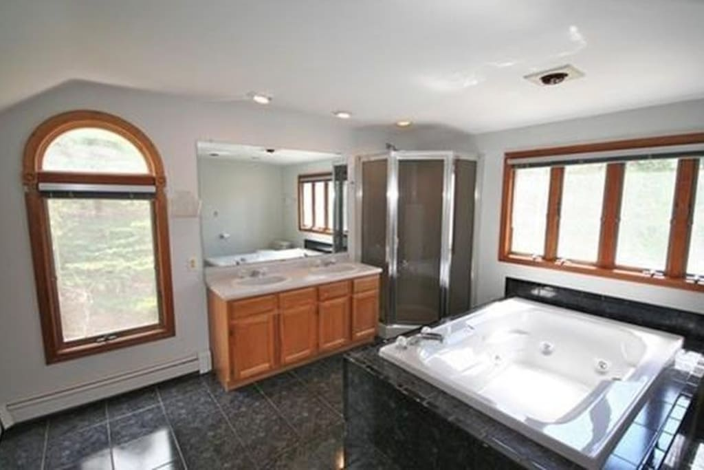 Over-sized master bathroom with jacuzzi tub and bidet