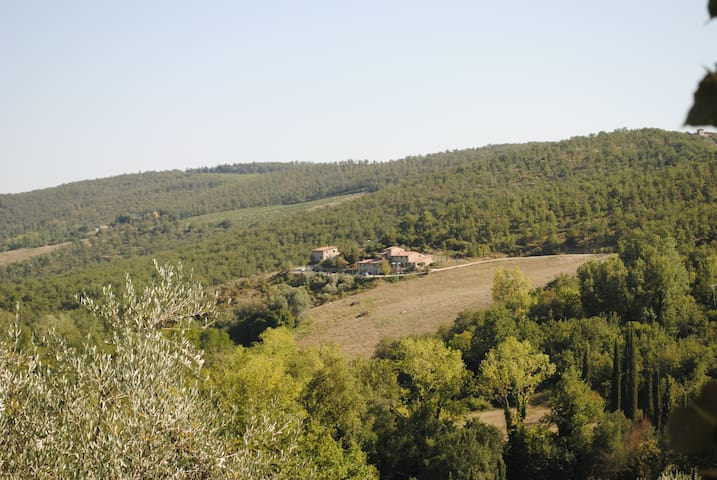 View of the panorama from the property.
