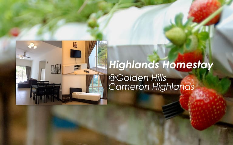 Highlands Homestay @Golden Hills Cameron Highlands - Brinchang - Leilighet