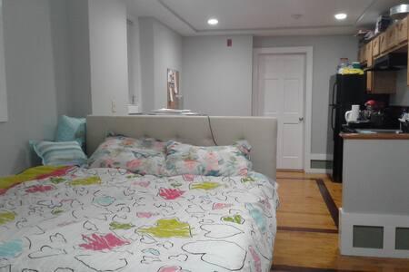 Beautiful studio, w/ queen size bed, parking spot - Chelsea
