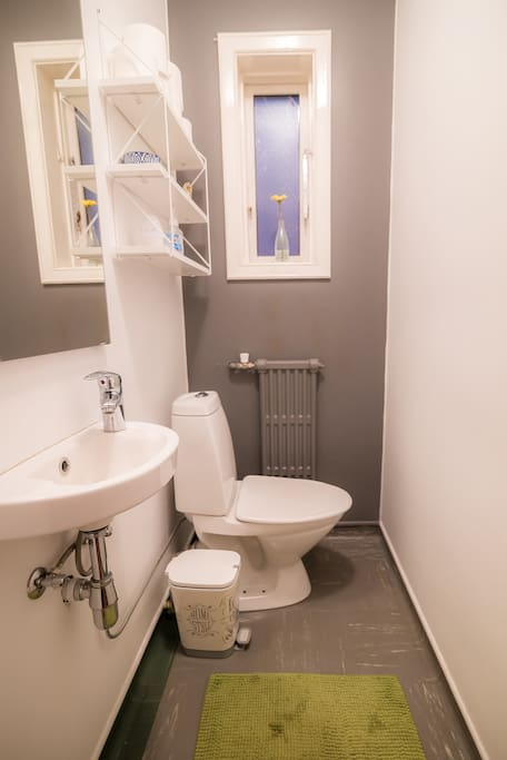 The small private toilet. Guests are welcome to take a shower inside the main flat.