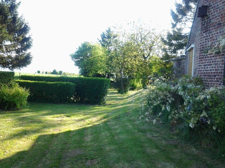 jardin ,pelouse